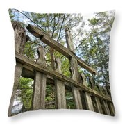 Echoes Of A Parent's Grief Throw Pillow
