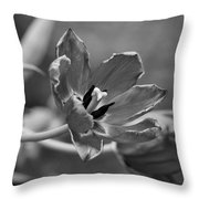 Echoes Of Past Glory Throw Pillow