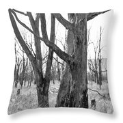 Echoes Of The Past Throw Pillow