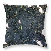 Eclipse Art 2 Throw Pillow
