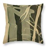 Eclipse Bamboo Throw Pillow
