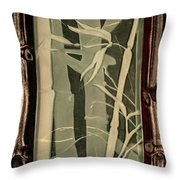 Eclipse Bamboo With Frame Throw Pillow