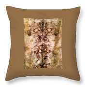 Eco Dyed Tapestry On Cotton Throw Pillow