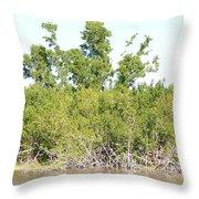 Eco Pond Throw Pillow