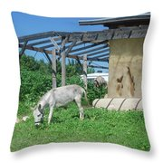 Ecological Farm Throw Pillow