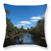 Econlockhatchee River Throw Pillow