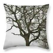 Edgartown Scene Throw Pillow