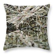 Edge Of Smith Lake Throw Pillow