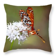 Edith's Checkerspot Five Throw Pillow