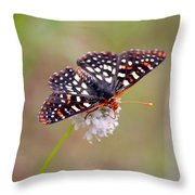 Edith's Checkerspot Three Throw Pillow