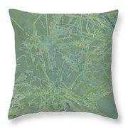 Edition 1 Sea Foam Throw Pillow