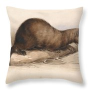 Edward Lear - A Weasel Throw Pillow