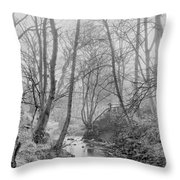 Edwardian Throw Pillow