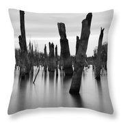 Eerie Lake Throw Pillow