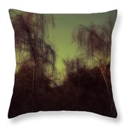 Eery Park Throw Pillow