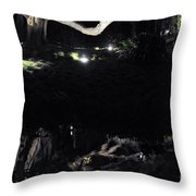 Eery Reflections Throw Pillow