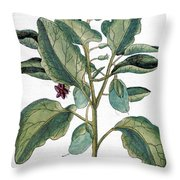 Eggplant, 1735 Throw Pillow