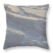 Eggwhite Snow Throw Pillow