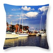 Ego Alley Evening Light Throw Pillow by Thomas R Fletcher