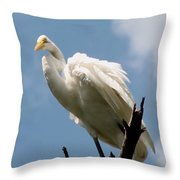 Egret 2 Throw Pillow