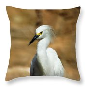 Egret 3 Throw Pillow