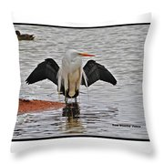 Egret And Cormorant Wings Throw Pillow