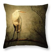 Egret And Eagle Throw Pillow