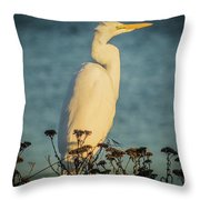 Egret At Dusk Throw Pillow