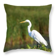 Egret At The River Throw Pillow