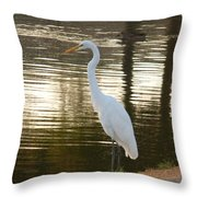 Egret At Waters Edge Throw Pillow