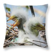 Egret Chicks In Nest With Egg Throw Pillow