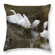 Egret Exit Throw Pillow by George Randy Bass