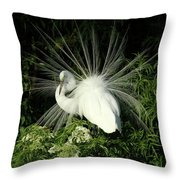 Egret Fan Dancer Throw Pillow