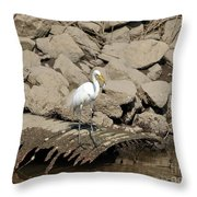 Egret Fishing Throw Pillow