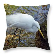 Egret Fishing Throw Pillow