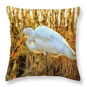 Egret Fishing In Sunset At Forsythe National Wildlife Refuge Throw Pillow