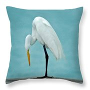 Egret Foot Inspection Throw Pillow