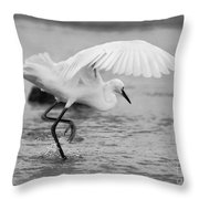 Egret Hunting In Black And White Throw Pillow