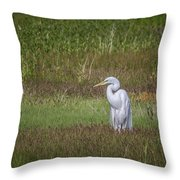 Egret In A Field, No. 1 Throw Pillow