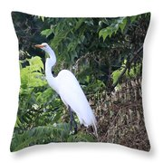 Egret In A Tree Throw Pillow