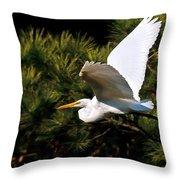 Egret In Flight 1 Throw Pillow