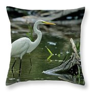 Egret In The Swamp Throw Pillow