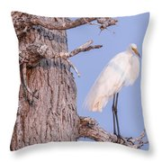 Egret In Tree Throw Pillow