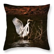 Egret Ix Throw Pillow by Gary Adkins