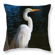 American Egret Throw Pillow
