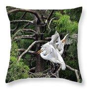 Egret Morning Throw Pillow
