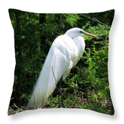 Egret On Guard Throw Pillow