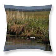 Egret On The Bayou Throw Pillow