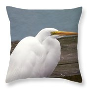 Egret On The Dock Throw Pillow