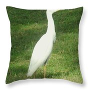 Egret Posing Throw Pillow